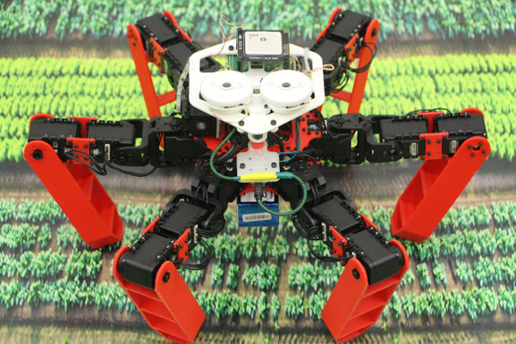 The AntBot robot