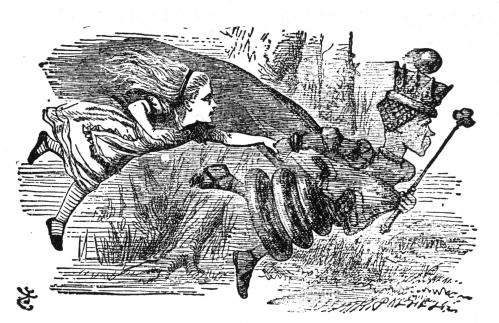 "The Red Queen hypothesis gets its name from Lewis Carroll's, Through the Looking Glass. The Red Queen tells Alice, ""It takes all the running you can do to stay in the same place."""